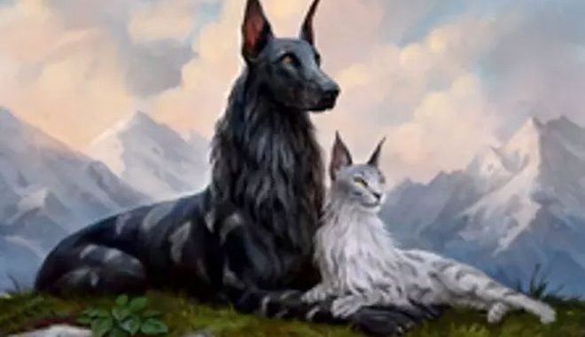 WotC WANTS TO KNOW IF YOU PREFER CATS Or DOGS & THEY'RE GIVING YOU ARENA CODES For 3 WEEKS
